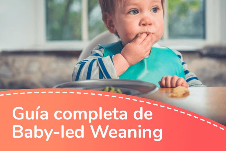Guía completa de Baby-led Weaning (BLW) o alimentación dirigida por el bebé